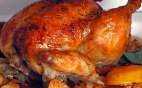 К ожирению ведет не еда, а работа иммунных клеток – исследование