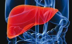 Новый способ диагностики и профилактики рака печени