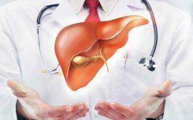 Донорские клетки могут заменить трансплантацию печени