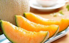 Эксперты Роспотребнадзора: дыня – тяжелый для пищеварения продукт