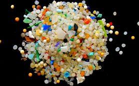 Пластик заражает ваш кишечник