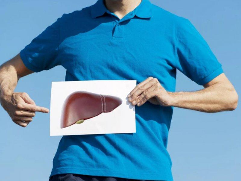 Ученые нашли новую причину диабета в печени