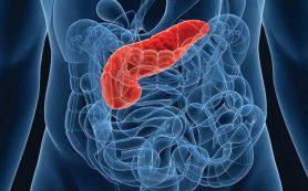 7 продуктов, которые идут на пользу поджелудочной железе