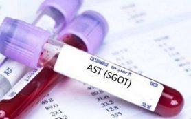 Анализ крови АЛТ