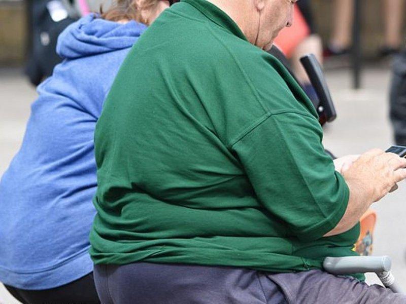 Сохранение лишнего веса до зрелости сокращает жизнь
