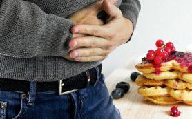 Ученые: растяжение кишечника (а не желудка) подавляет аппетит
