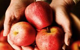 Определены продукты, наиболее и наименее загрязненные пестицидами