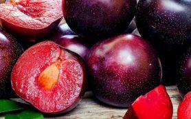 5 полезных косточковых фруктов, которые обязательны в вашем рационе