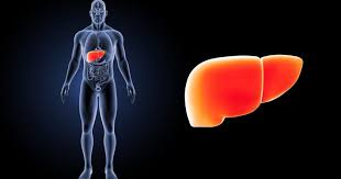 Врач: изменения с кожей могут указать на болезни печени и кишечника