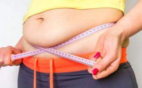 Названы лучшие продукты для борьбы с вредным висцеральным жиром на животе