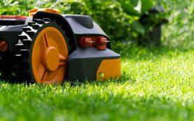 Какая садовая техника обязательно должна быть в вашем саду?