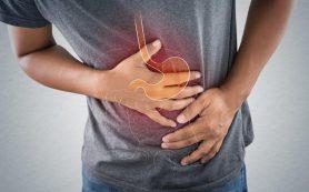 Для регенерации слизистой кишечника необходим набор особых продуктов