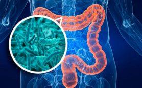 Дисбактериоз и его патогенез, признаки заболевания