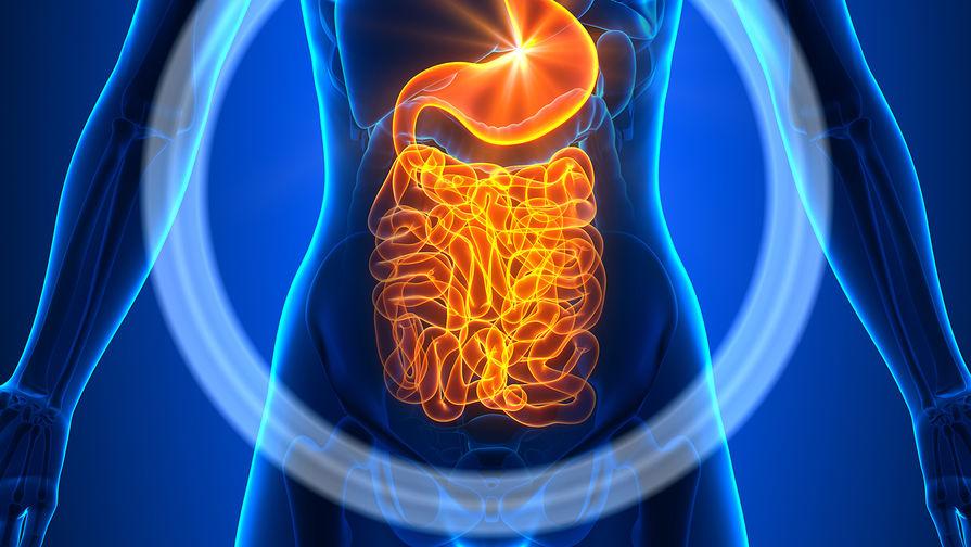 Названы простые способы восстановить естественную микрофлору кишечника