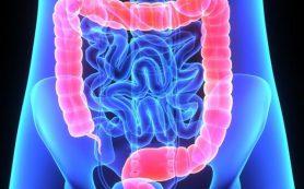 Воспаление в кишечнике: какого питания надо придерживаться при колите