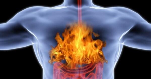 3 растительных средства для борьбы с изжогой и болями в желудке