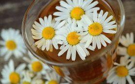 6 рецептов ромашкового чая при заболеваниях желудка