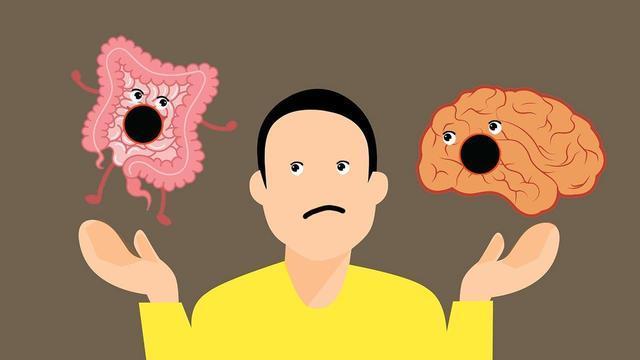 Найдена связь между инсультом и микробиомом кишечника