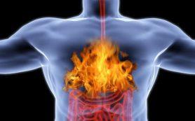 Правила питания и фитотерапия при изжоге