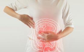 Диета с чрезмерным содержанием жиров и антибиотиков провоцирует болезни кишечника
