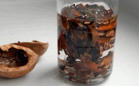 Целебная настойка из перегородок грецкого ореха от сахарного диабета, радикулита и боли в суставах