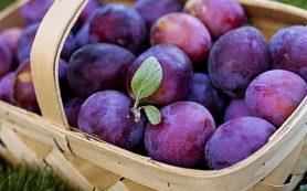 Назван самый полезный фрукт для сердца и ЖКТ