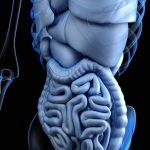 Тошнота и диарея могут говорить о раке тонкой кишки
