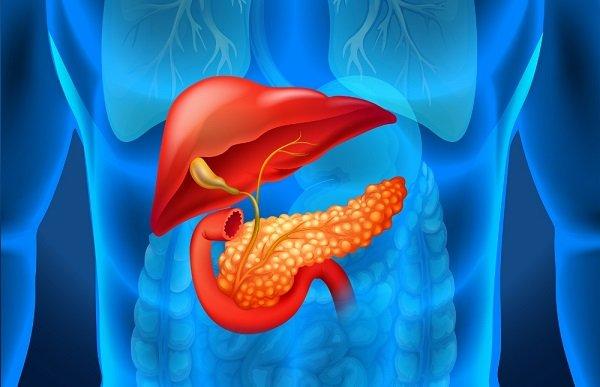 Панкреатит: симптомы опасного заболевания, которые важно узнать вовремя