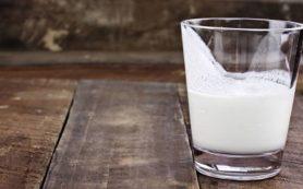 Семь продуктов для улучшения пищеварения и здоровья кишечника