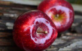 Лучшие фрукты зимой для избавления от запора