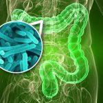Уникальный состав микрофлоры кишечника приводит к анорексии
