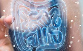 Здоровье пищеварительной системы: натуральные добавки