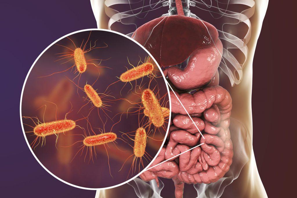 Дисбактериоз: лечение и профилактика
