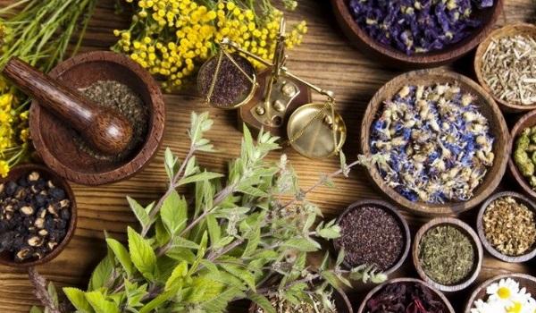 Какие травы помогают при гастрите желудка