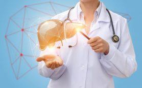 Эксперт: жировая болезнь печени приводит к инфаркту