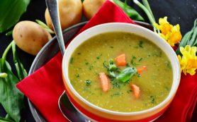 Почему в рационе обязательно должен быть суп