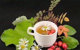10 травяных сборов при панкреатите