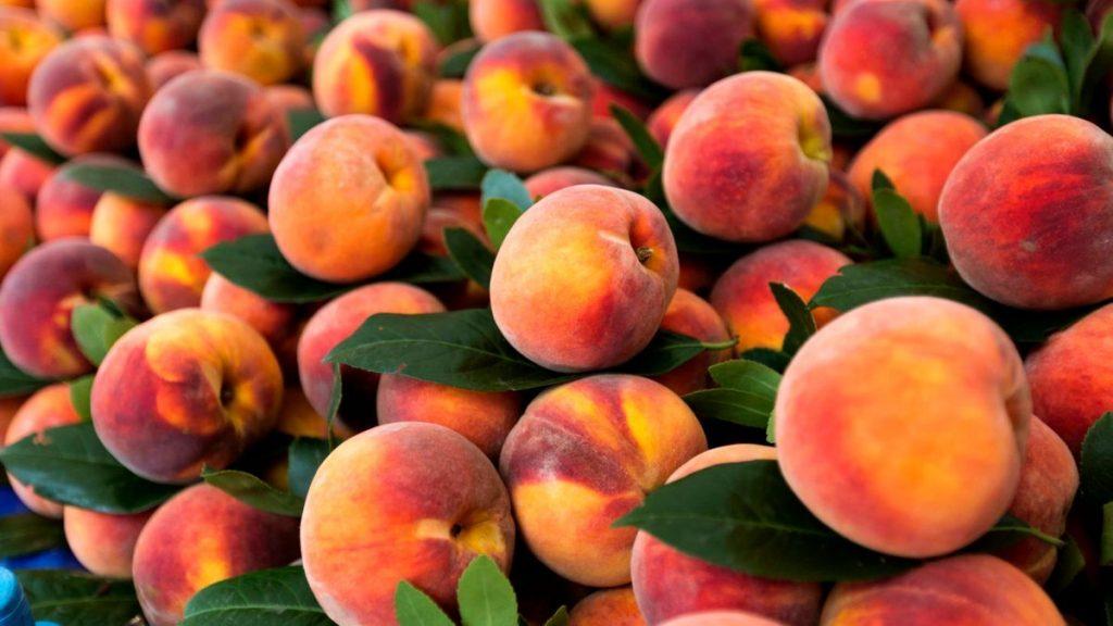 Пищеварение и давление: названы веские причины чаще есть персики