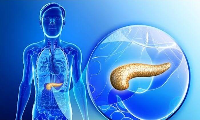 Поврежденные клетки поджелудочной железы можно восстановить