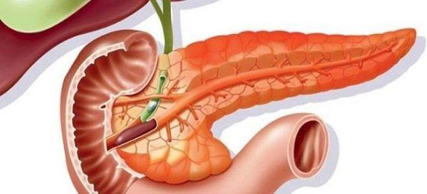 Простые и эффективные способы очищения поджелудочной железы