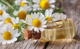 Лекарственные травы при панкреатите