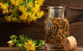 9 рецептов из лекарственных растений для профилактики и лечения геморроя