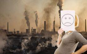 Плохая экология сказывается на здоровье поджелудочной