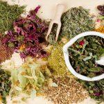Травяные сборы при лечении заболеваний желудочно-кишечного тракта